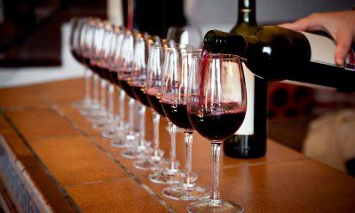 Conheça os Tipos de Degustações de Vinhos