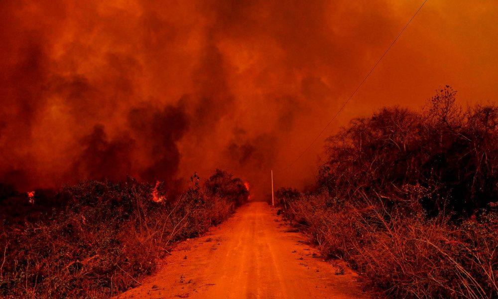 Imagem & credibilidade #047 - Enquanto as florestas queimam, começa o FlaXFlu das eleições municipais
