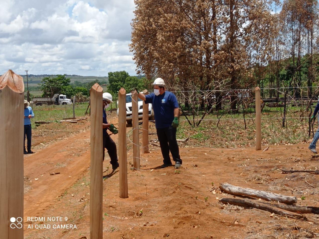 Foto: Divulgação/DF Legal