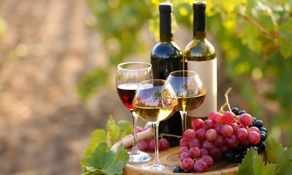 O porquê o vinho deveria ser incluído na cesta básica brasileira?