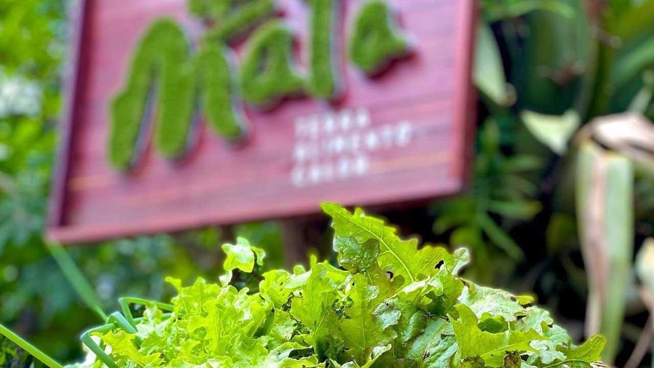 Na Mata Restaurante