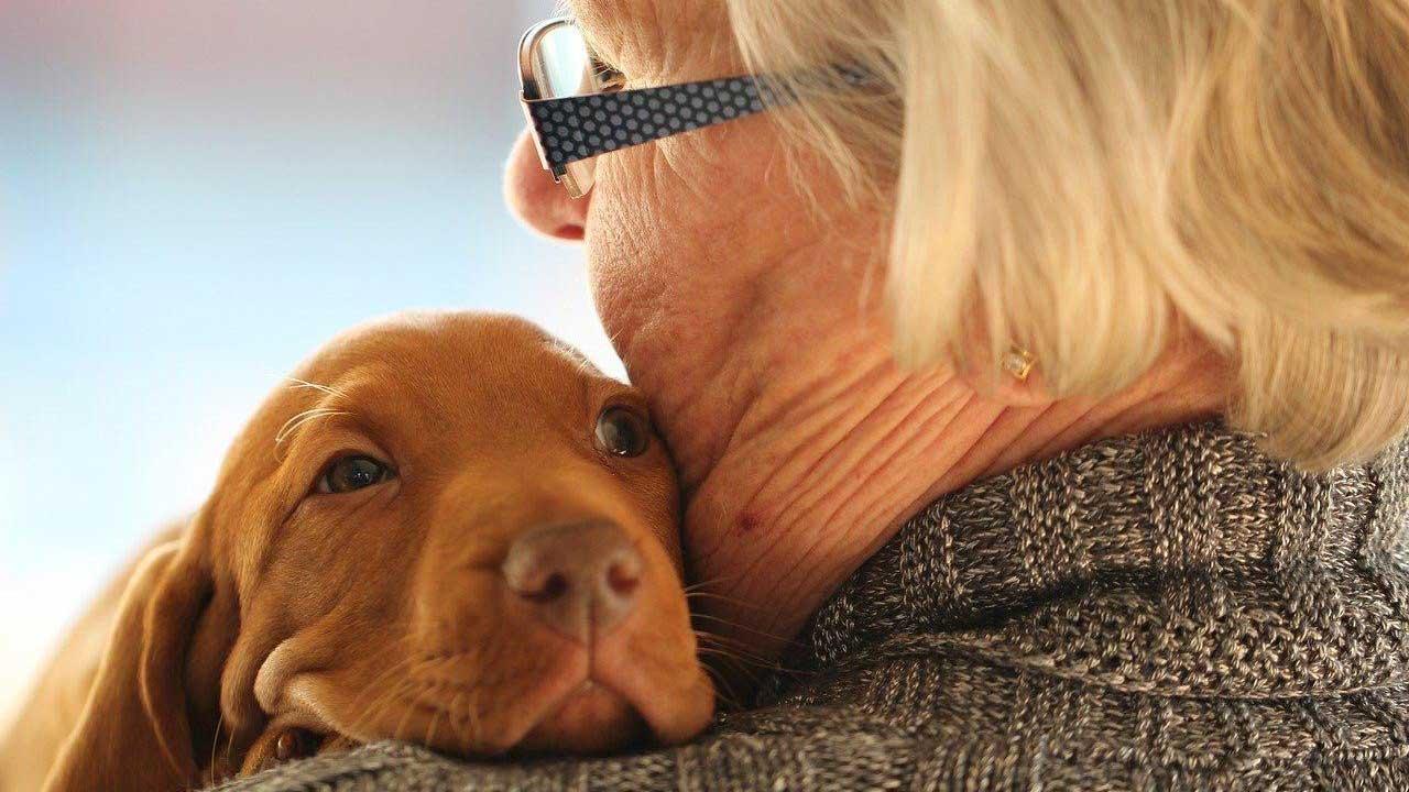 Pets ajudam idosos a vencer a solidão na pandemia