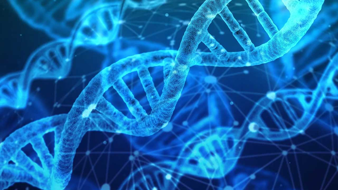 Especialista comenta sanção da lei que permite exame de DNA em parentes consanguíneos para comprovar suspeita de paternidade