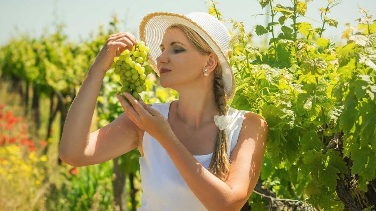 Cosméticos à base das uvas dos vinhos?