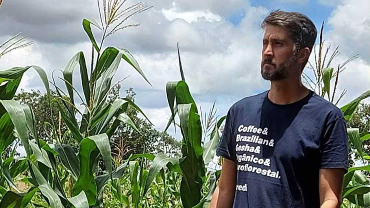 Morador do DF cria vaquinha online para plantar 20 mil árvores