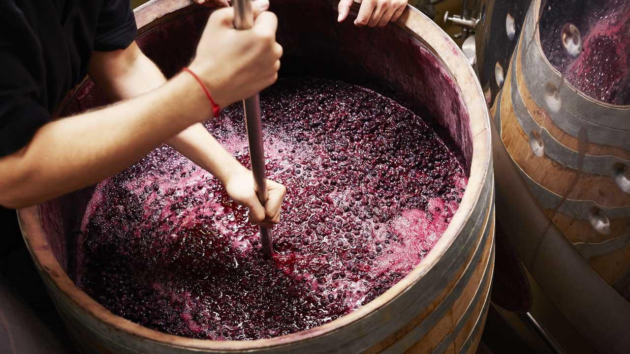 Quais são os maiores produtores de vinhos do mundo?