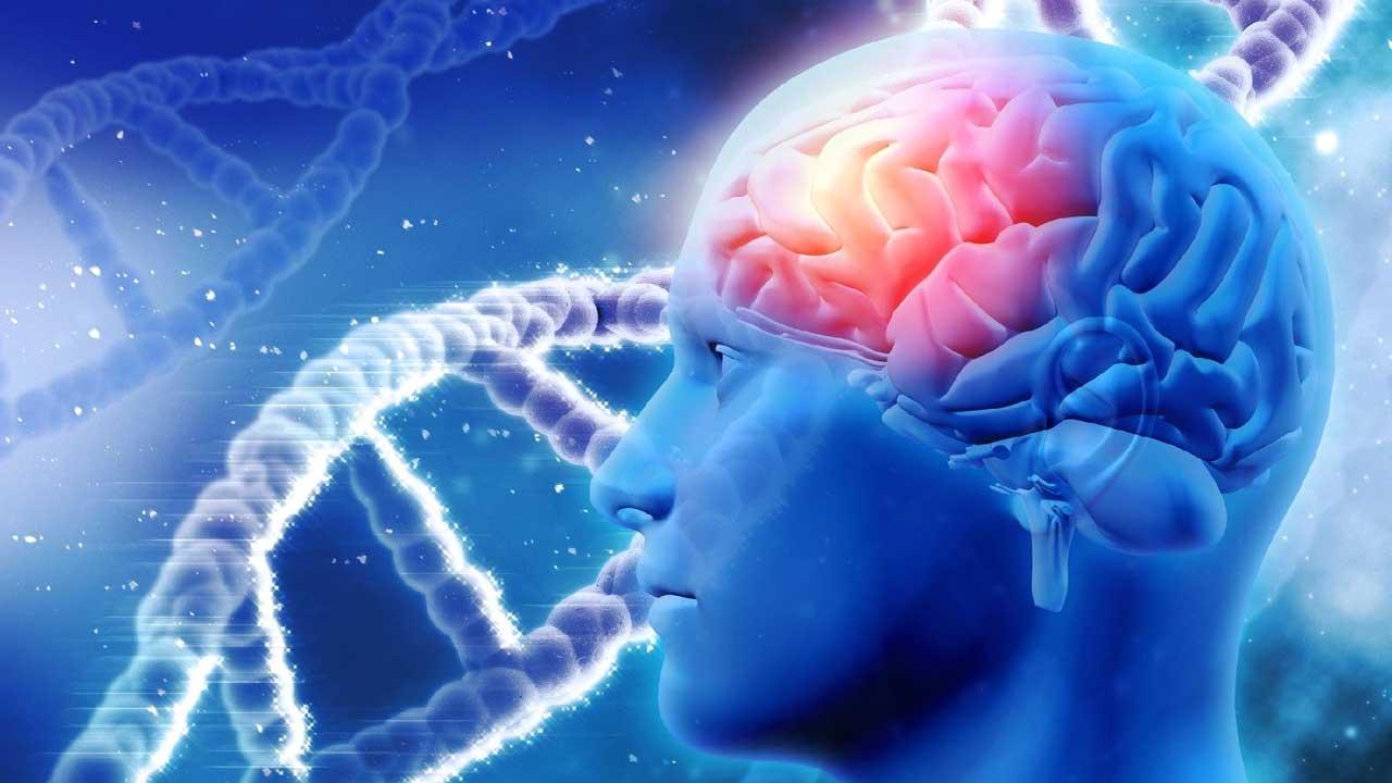 Hôrmonio D e Alzheimer