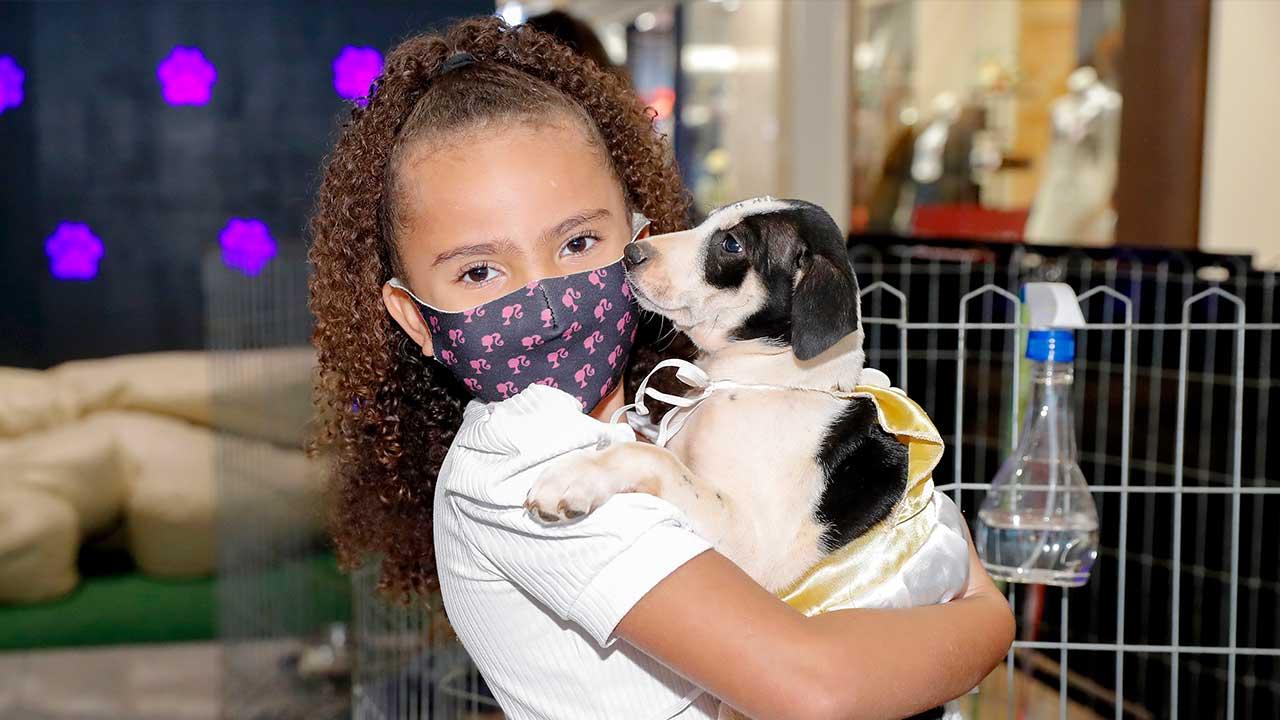 PKS Pets: um cãozinho ou gatinho pra chamar de seu!